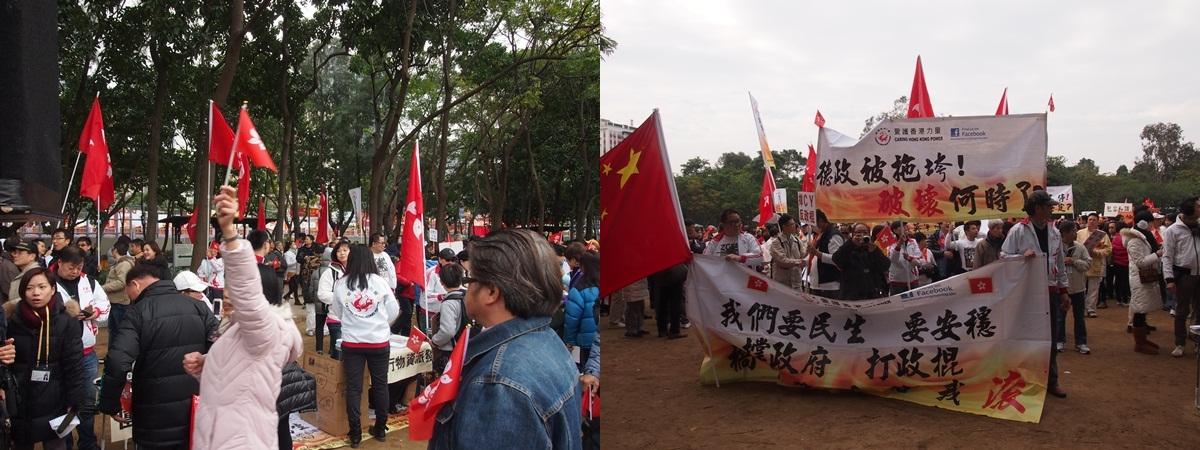 愛港力2012年12月30日撐政府保民生大遊行