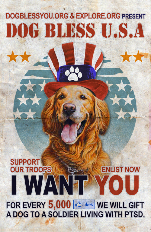 Dog Bless USA poster